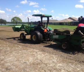 Sprigging a golf course with Celebration Bermuda