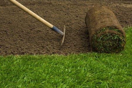 Top 3 Benefits of Purchasing Sod from a Farm